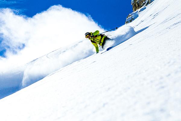 Skieur dans un jardin de poudreuse