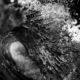 vague vierge noir et blanc